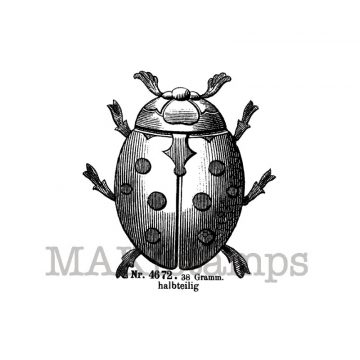 Beetle rubber stamp makistamps