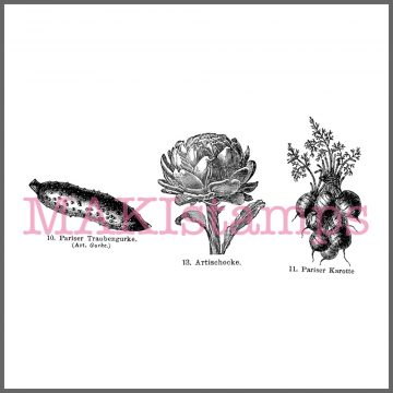 Gemüse Stempel
