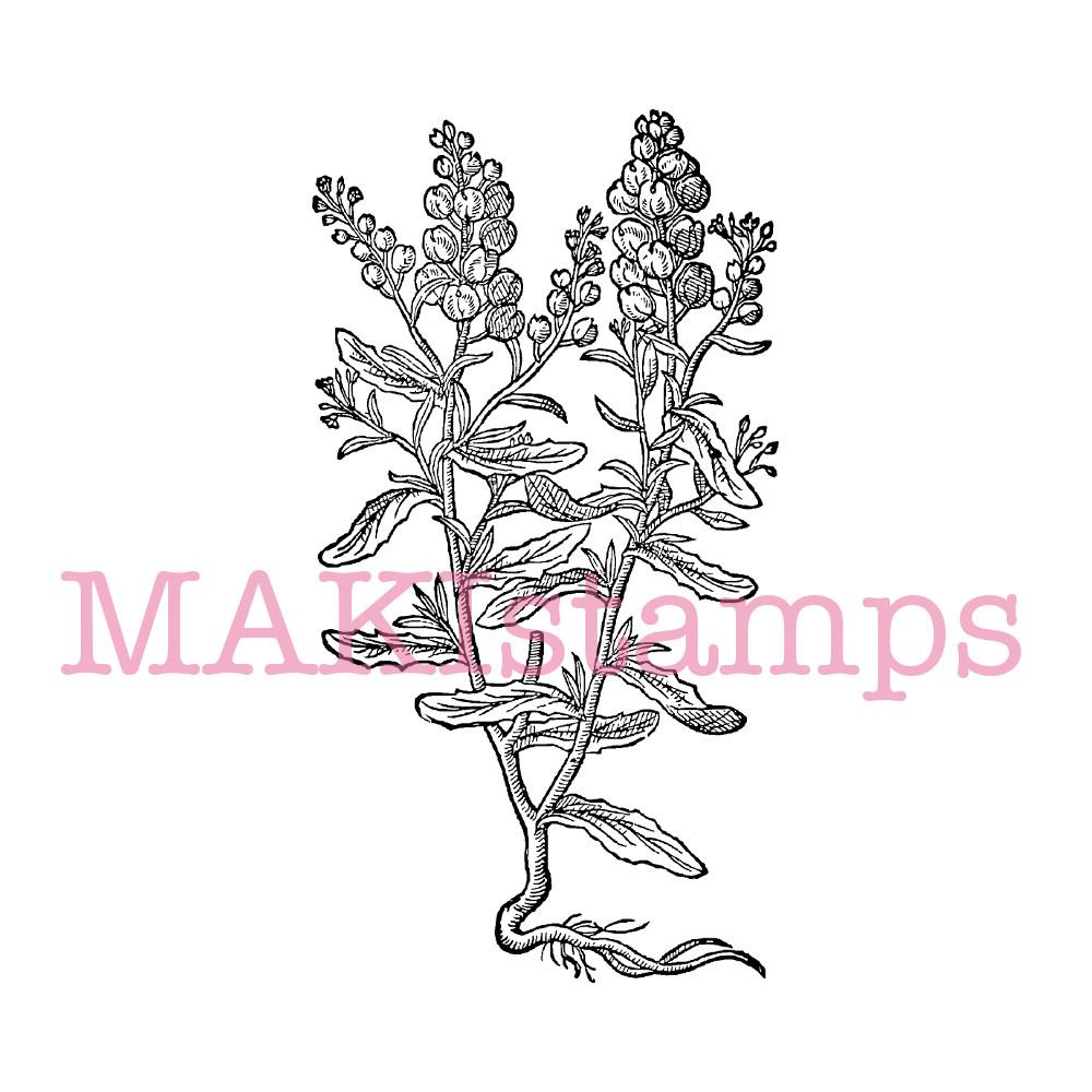 plant rubber stamp garden mustard MAKIstamps