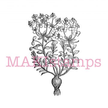 garden plant rubber stamp MAKIstamps