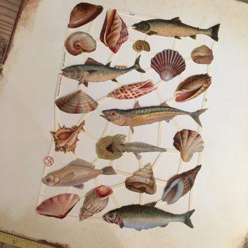 German paper scraps fish vintage style MAKIstamps