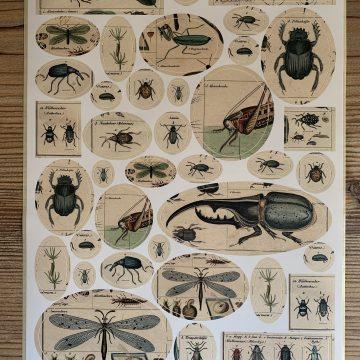 Sticker Vintage Käfer MAKIstamps