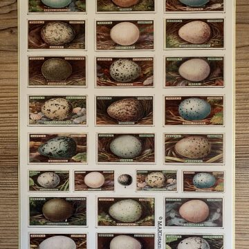 Sticker Vintage Eier MAKIstamps
