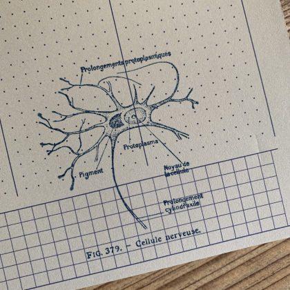 Stempel Nervenzelle MAKIstamps