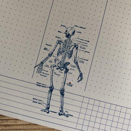 Stempel Anatomie MAKIstamps