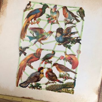 paper scraps vintage style exotic birds