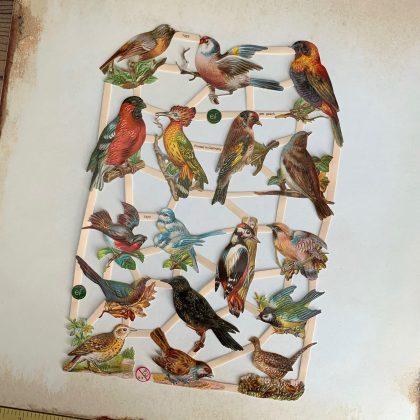 vintage style german paper scraps birds
