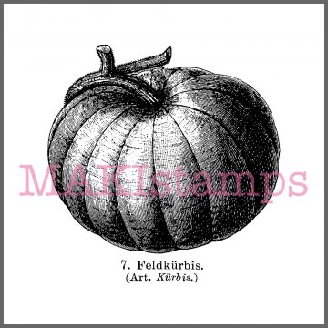pumpkin rubber stamp halloween