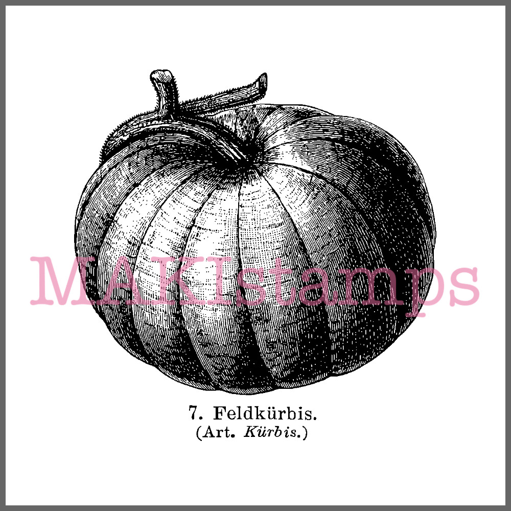 pumpkin rubber stamp halloween