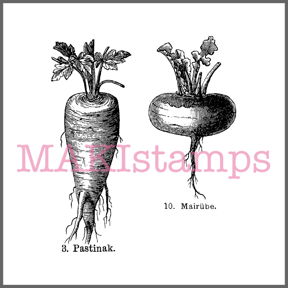 cooking rubber stamp set vegetables