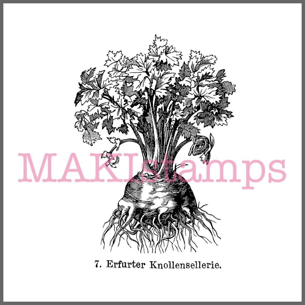 german rubber stamp garden vegetables