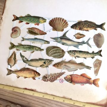 fish die cuts german paper scraps MAKIstamps