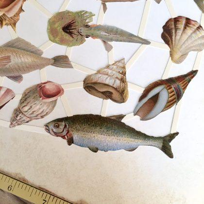 vintage style die cuts fish MAKistamps