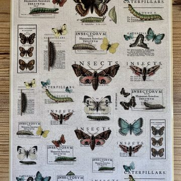 butterfly sticker MAKIstamps