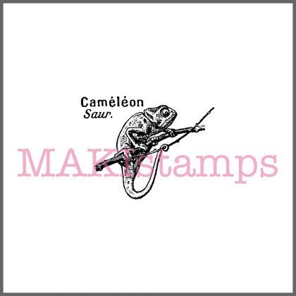 rubber stamp chameleon
