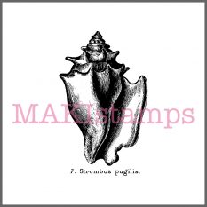 conch rubber stamp MAKIstamps