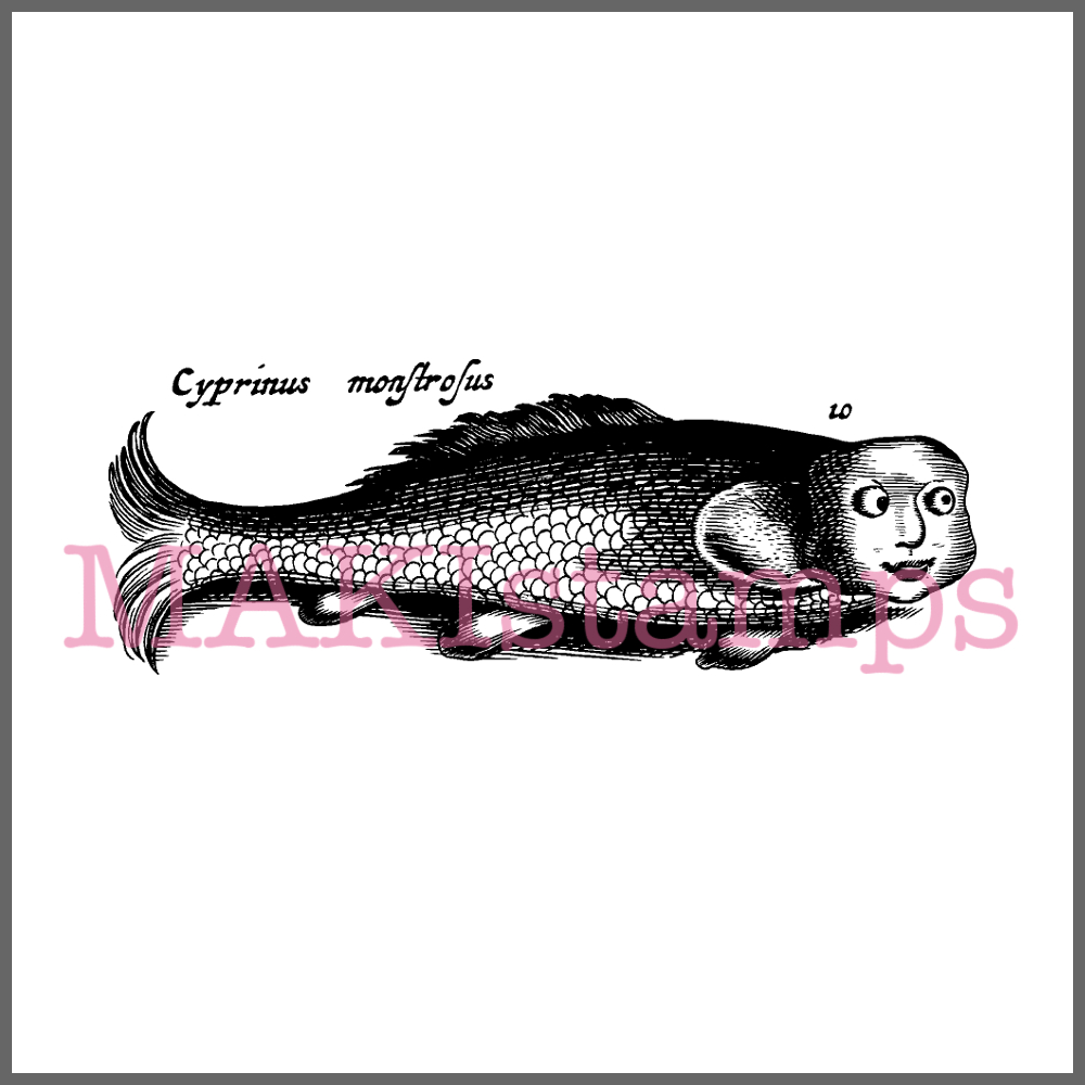 vintage fish rubber art stamp fishes