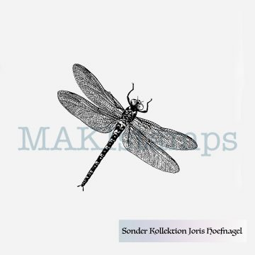 little dragon fly stamp MAKIstamps Hoefnagel collection