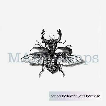 rubber stamp little stag beetle Hoefnagel MAKIstamps special collection