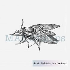 MAKIstamps rubber stamp moth Hoefnagel special collection