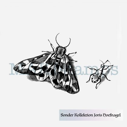 Butterfly stamp MAKIstamps Hoefnagel special collection rubber art stamps