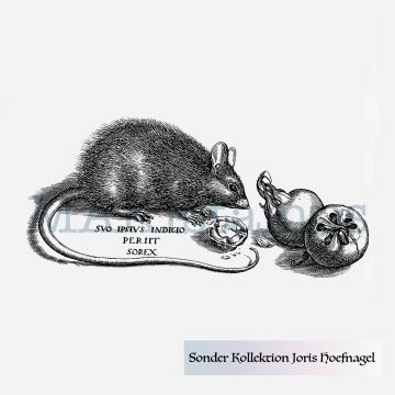Mouse rubber stamp MAKIstamps Hoefnagel special collection rubber art stamps