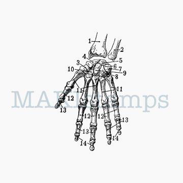 Skelett Hand Stempel MAKIstamps