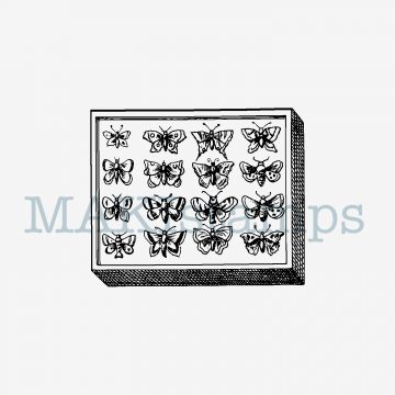 butterfly stamp MAKIstamps
