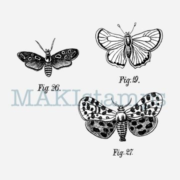 butterfly stamp set MAKIstamps