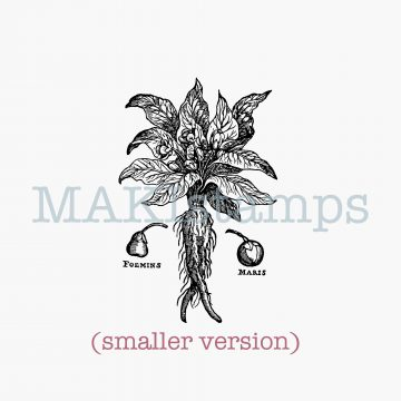 rubber stamp mandrake MAKIstamps
