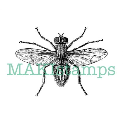 science rubber stamp realistic fly