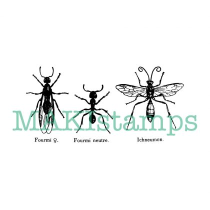 insect rubber stamp three ants