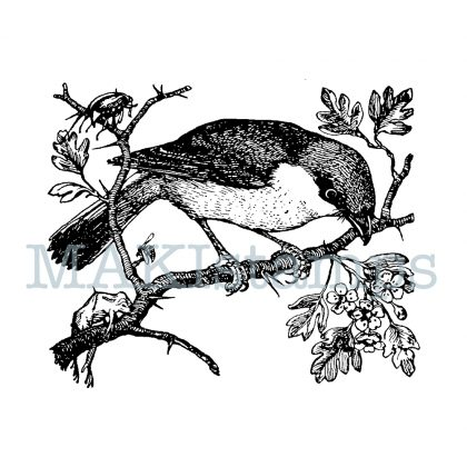 rubber art stamp bird
