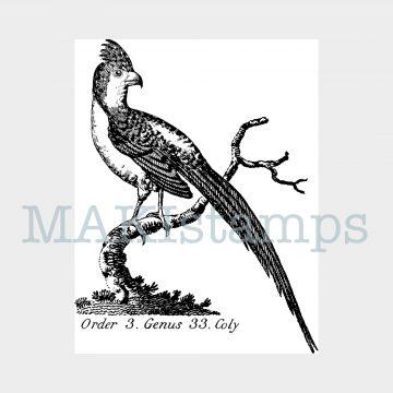 rubber art stamp vintage bird