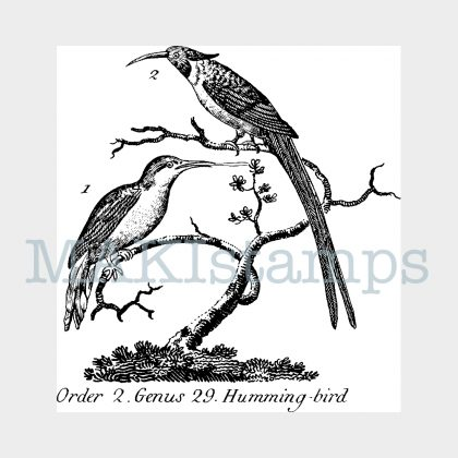 hummingbird vintage rubber art stamp MAKIstamps