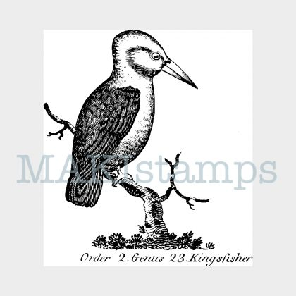 Kingfisher rubber stamp MAKIstamps