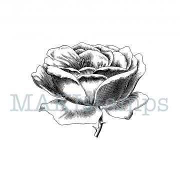 rubber stamp rose