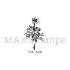 botany rubber stamp MAKIstamps