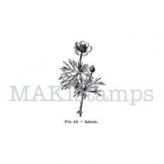 botany rubber stamp MAKIstamps