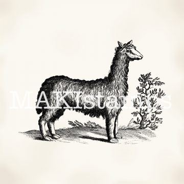 Llama rubber stamp MAKIstamps