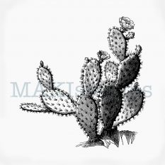 Cactus rubber stamp opuntia MAKIstamps