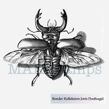 medieval stag beetle rubber stamp Hoefnagel special collection MAKIstamps